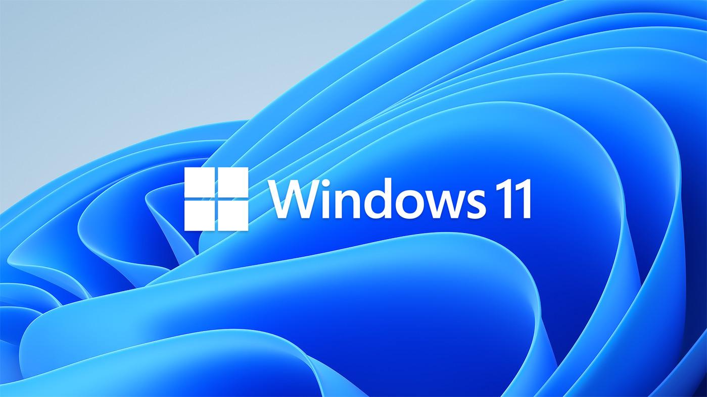 Fond Windows 11 Logo
